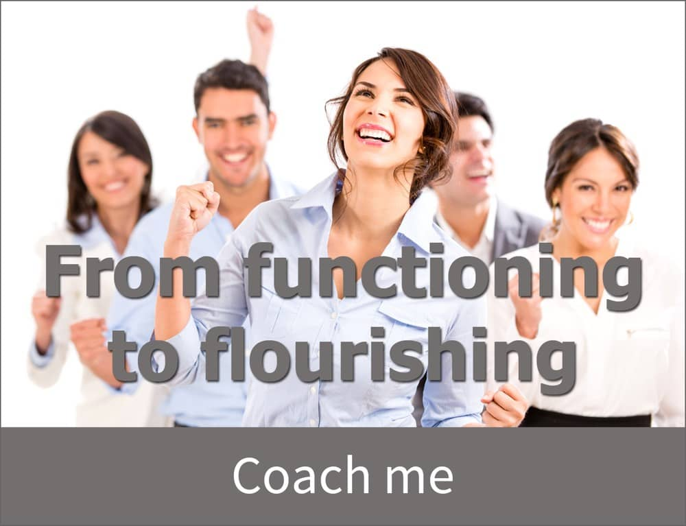 coach, personal coach, life coach, positive psychology, team, coach, coaching, teamcoach