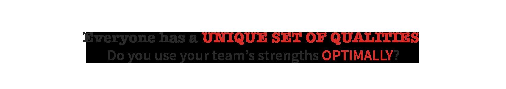 unieke, kwaliteiten, team, top, resultaat, results, team, succes, success, productiviteit, productivity